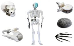經部補助 台大德芮達3D列印醫材