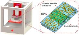 3D列印細菌纖維素水凝膠基質